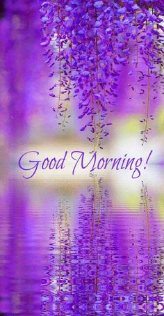 """purple wisteria reflection by JBot"" Beautiful flowers, beautiful photo. Purple Love, All Things Purple, Shades Of Purple, Purple Rain, Purple Stuff, Purple Ombre, Bright Purple, Belle Photo, Pretty Flowers"