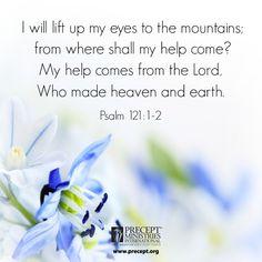 #help #faith #lookup www.precept.org