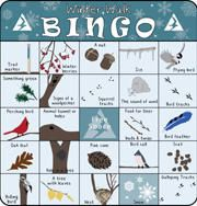 Winter Bingo Card, also spring, fall and summer. Great for taking a hike! #hike #girlscouts