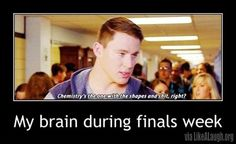 My brain during finals week | Likealaugh