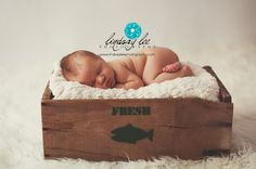 North Port FL Newborn Photographer | Lindsay Lee Photography
