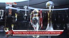 """Troféus do """"Triplete"""" no Museu Benfica - Cosme Damião"""