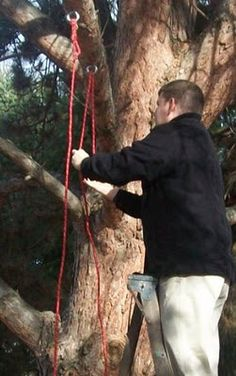 Seekadoo: How to Build a Wooden Tree Swing - Illustrated.