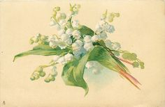 Lily of the valley ~ 1906
