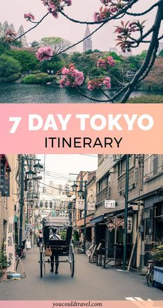 7 day Tokyo Itinerary - After spending months exploring the Japanese capital, we decided to put together a 7 day Tokyo itinerary to help you better tailor your trip. Japan is a wonderful country and Tokyo really is as colourful as you could imagine. Tokyo Travel Guide, Tokyo Japan Travel, Japan Travel Guide, Japan Trip, Tokyo Trip, Japan Guide, Tokyo 2020, Day Trips From Tokyo, Solo Travel