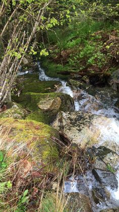 Waterfall during our hike in Balestrand, Norway
