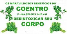 coentro_-_beneficios_-_novo_ed