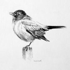 Bird Drawing III Print