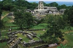 Mayan Ruins in Mexico. What used to be such a great civilization has gone to this. Sad, but so beautiful.