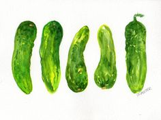 Little #Cucumbers Watercolor Food, Watercolor Sketch, Watercolor Print, Watercolor Paintings, Vegetable Illustration, Garden Illustration, Vegetable Painting, Original Art, Original Paintings