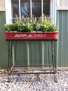 Old fish tank base with little red wagon filled with sun loving plants. Reuse, repurpose, redo..