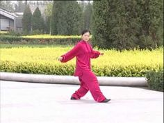 Another Yang Style 24 Tai Chi Chuan...like how clearly visible most postures are