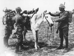 Canakkale Battle of Gallipoli ile ilgili görsel sonucu Once Upon A Time, Turkish Soldiers, Ottoman Turks, Combat Medic, Last Battle, Cultural Identity, Harbin, Ottoman Empire, World War I