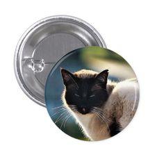 Siamese Cat Button http://www.zazzle.com/siamese_cat_button-145382850082913923?rf=238498825812378580