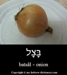 "How to say ""Onion"" in Hebrew. Click here to hear it pronounced by an Israeli: http://www.my-hebrew-dictionary.com/onion.php"