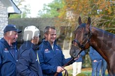 American Pharoah with MV Magnier, right, and Bob Baffert, and RIchard Barry, left. American Pharaoh at Keeneland morning after Classic win on Nov. 1, 2015, Anne M. Eberhardt Photo