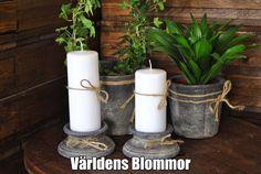 Betong Världens Blommor Annorlunda Blomsterbutik