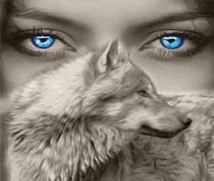 Read Lobos from the story Imagenes Para Tus Novelas by Cladia_Diaz (Claudia_Diaz) with reads. Wolf Spirit, Spirit Animal, White Wolf, Black And White, Wolves And Women, Wolf Eyes, Wolf With Blue Eyes, Green Eyes, Wolf Love