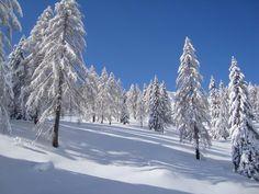 Nassfeld / Skiing in Austria