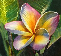 """Blushing Plumeria"" - Original Fine Art for Sale - © Arena Shawn"
