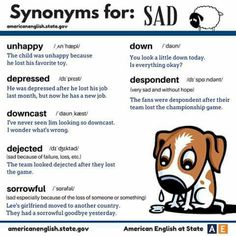 Vocabulary  Hair...Sadness Synonym