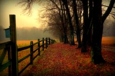 Landscape directional photo ideas: Fox Chase Farm by Allan Cabrera on Beautiful Songs, Beautiful Pictures, Country Life, Country Roads, Country Living, Cow Photos, Facing Fear, Forest Wallpaper, Country Scenes