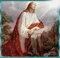 Gifs y Fondos PazenlaTormenta: IMÁGENES DE JESÚS EN EL HUERTO DE GETSEMANÍ O DE LOS OLIVOS