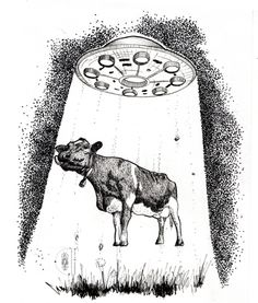 Cow Abduction illustration.  https://www.behance.net/todaslasgalaxias  www.ismedium.com
