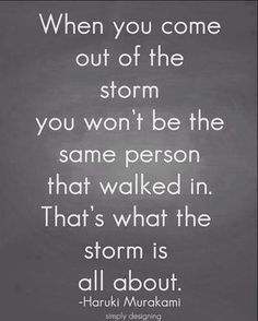When you come out of the storm you won't be the same person that walked in. That's what the storm is all about. ~Haruki Murakami