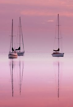Pink Dawn , Corio Bay Australia via flickr
