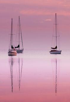 Pink Dawn , Corio Bay Australia via flickr