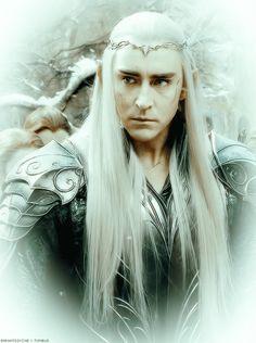 Lee Pace as Thranduil Thranduil Cosplay, Lee Pace Thranduil, Legolas And Thranduil, Aragorn, Tauriel, Gandalf, Fellowship Of The Ring, Lord Of The Rings, Tolkien