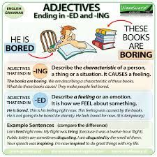 Image result for a , an grammar