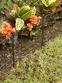 Garden Border Fencing: Decorative Victorian Garden Edging, Set of 3
