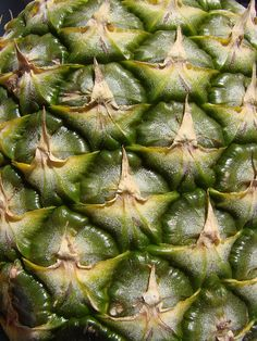 my final year project was exploring this texture/textile - the pineapple