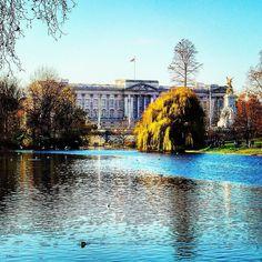 Buckingham Palace #buckingham #buckinghampalace #monument #monumento #cityscape #city #cities #ville #uk #iloveuk #igerslondon #londres #london #europe #photo #photos #photoshoot #fotoshoot #fotoshooting #fotos #royal #royalfamily #lac #lake by olivier_roth