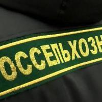 Информация ООО ЛонгТрейд - Россельхознадзор ввел режим усиленного лабораторного контроля на ряд белорусских предприятий