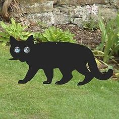 How to Keep Stray Cats Out of Your Yard  Did the neighborhood stray cats pick your yard for their favorite bathroom? Most local laws allow cats to roam free, and it is a crime to harm them. Here are many suggestions that you can try. What works for one cat, might not work for another so be prepared to try more than one solution.  9 tried & true solutions. Good luck!