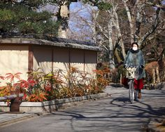 Winter morning    Philosopher's Walk [Tetsugaku-no-michi], Kyoto, Japan    Daily life scene...