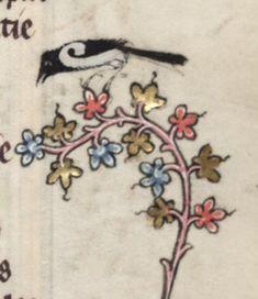Medieval bird on fłowers Medieval Books, Medieval Manuscript, Medieval Art, Renaissance Art, History Medieval, Medieval Tattoo, Illuminated Letters, Illuminated Manuscript, Principles Of Art