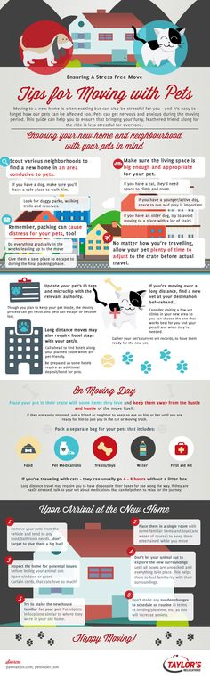 Tips For Moving With Pets To Make It A Smooth Transition For Everyone!