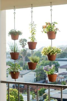 I love ❤️this way of hanging pots for a garden screen or a great point of interest