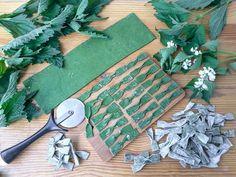 зеленая лапша в виде бантиков, бабочек фарфалле, farfalle