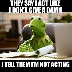 Fired Kermit Actor Responds to Jim Henson Daughter's 'Depressed Victim' Slam Funny Kermit Memes, Funny Jokes, Hilarious, Miss Piggy, Jim Henson, Work Memes, Work Humor, Sapo Kermit, Reaction Pictures