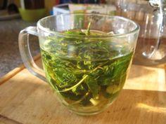 Přírodní léčba - čaj na bolest hlavy Cabbage, Vegetables, Cooking, Health, Tips, Food, Witch, Gardening, Syrup