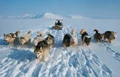 Bildergebnis für inuit greenland