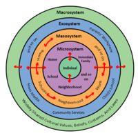 004 Bronfenbrenner's Bioecological Model Get Psyched
