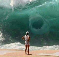 I dont know whats scarier. The giant wave or the shark. Either way, this lady is a goner. Probably not a Megaladon Shark Pictures, Shark Photos, Ocean Pictures, Big Shark, Shark Art, Ocean Creatures, Mythical Creatures, Scary Ocean, Scary Shark