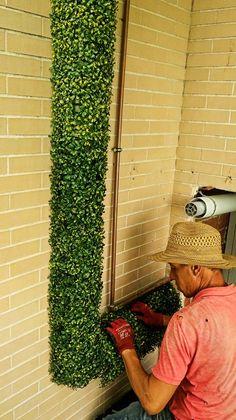 Forro con #Jardin #Vertical #Artificial con #Boje #verticalymusgo #Somos #Musgo #Moss #Liquen #Verticales #Decoración #musgomanía Jardin Vertical Artificial, Vertical Bar, Porches, Sofas, Home, Vertical Gardens, Interiors, Vegetable Gardening, Architecture