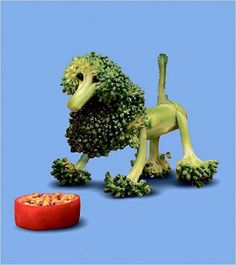 "Broccoli poodle from ""Dog Food"" by Saxton Freymann and Joost Elffers"